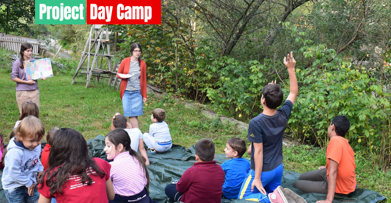 fiecarecopil_Project_Day-camp